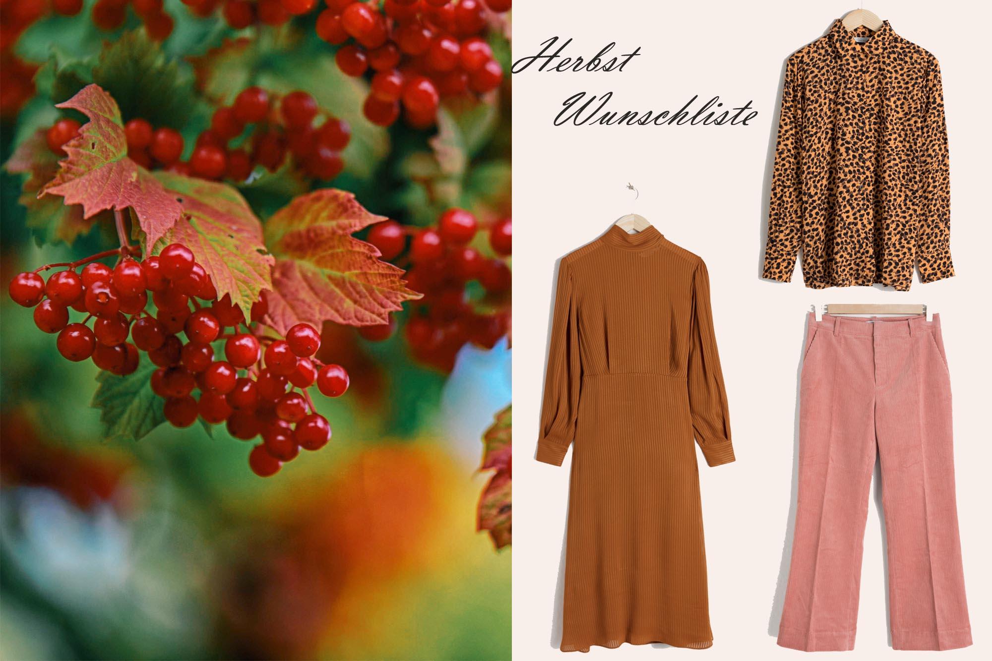Modeblog-Deutschland-Herbst-Wuschliste